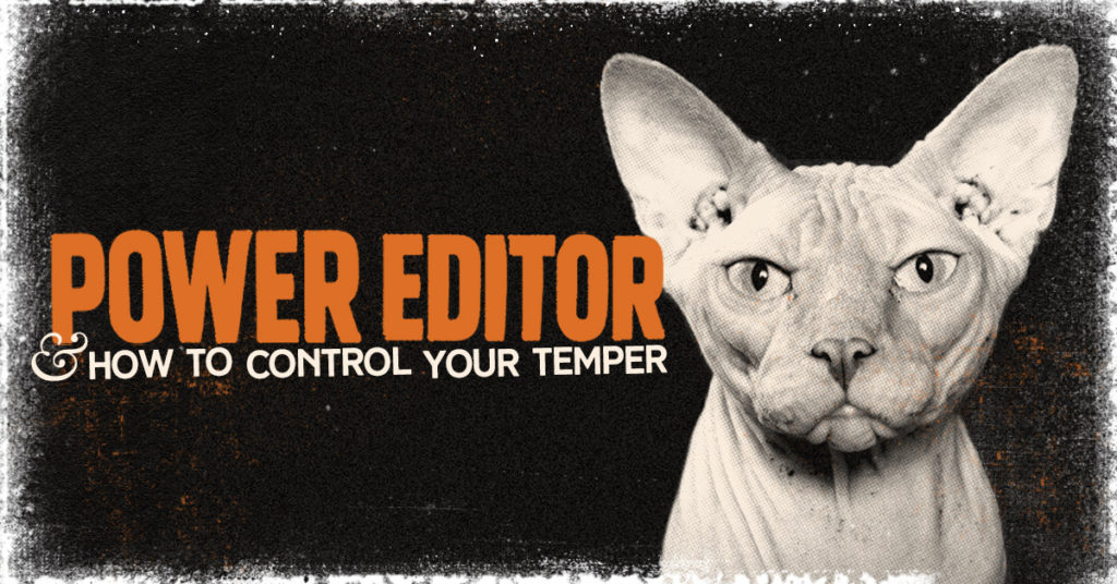 Temperamental Hairless Cat Growing Frustrated with Facebook's Power Editor Tool